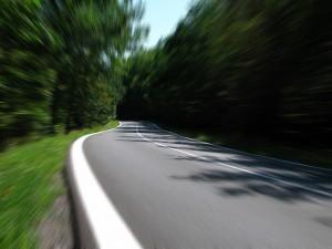 Минприроды разрешило строить дороги в зеленых поясах вокруг крупных городов
