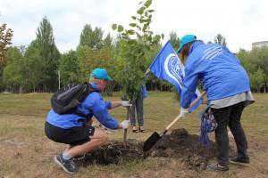 В Самаре прошла акция по реабилитации Воронежских озер