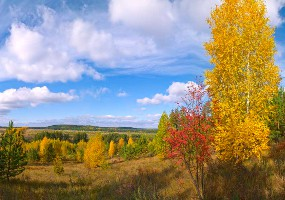 Первые сентябрьские выходные в Самарской области будут теплыми