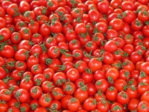 Александр Ткачев не исключил возобновления поставок томатов из Турции