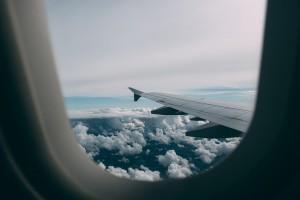 Нарушительница общественного порядка на борту самолета  «Москва-Красноярск» укусила полицейского в Домодедове