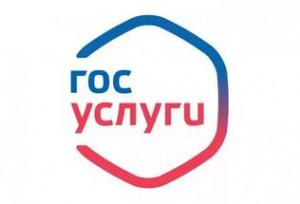 Более 50% жителей Самарской области зарегистрированы на портале госуслуг