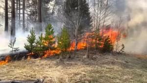 Штормовое предупреждение объявлено в Самарской области