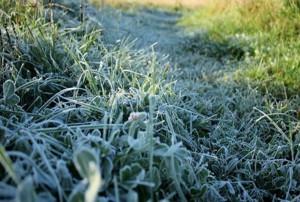 В Самарской области объявили штормовое предупреждение из-за похолодания (исправлено)