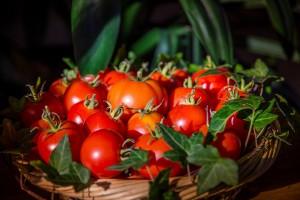 Иногда они возвращаются: турецкие помидоры все же вернутся на российские прилавки, но не раньше января 2018 года