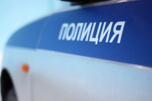 У тольяттинки выхватили из рук телефон за 20 тысяч
