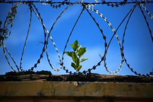 Самарец проведет 3,5 года в колонии строгого режима за приобретение и хранение героина