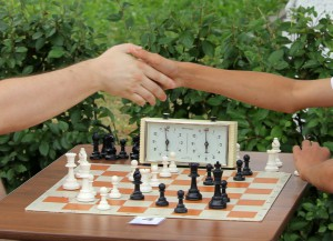 Уроки шахмат в начальной школе введут в течение двух лет