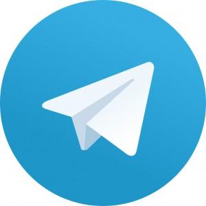 Власти запустят сеть из 100 анонимных телеграм-каналов в регионах для формирования повестки перед выборами президента