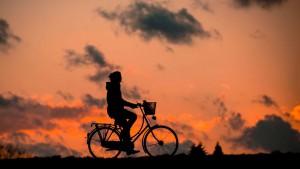 В Борском районе гость из Ханты-Мансийска украл велосипед у девушки — социального работника