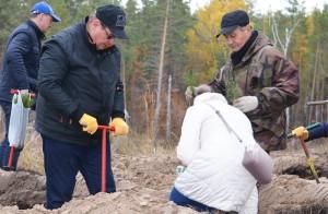Энергетики «Т Плюс» высадили 4,5 тысячи сеянцев сосны на месте погибшего соснового бора в Тольятти