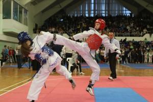 В Тольятти с тхэквондо стартует Спартакиада боевых искусств «Непобедимая Держава»