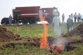 Ситуация с Африканской чумой в Красноармейском районе на контроле ГУ МЧС Самарской области