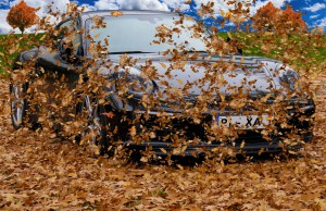Ожидается ухудшение погодных условий: дождь, мокрый снег, местами сильные порывы ветра