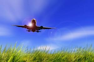 Самолет совершил вынужденную посадку в Индии из-за узнавшей об измене мужа пассажирки из Ирана