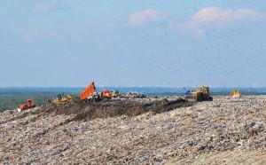 В Москве арестован директор крупнейшего мусорного полигона Европы