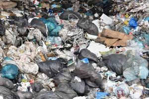 Эксперты ОНФ «Генеральная уборка» выступают против строительства 58 полигонов ТКО в Самарской области