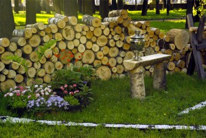 С ноября месяца в Самаре начнутся занятия в «Школе садоводов»