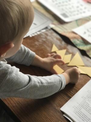 В Чапаевске пройдет день правовой защиты  семей, воспитывающих детей с ОВЗ