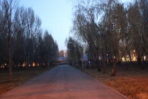 До конца ноября в Самарской области сохранится довольно теплая погода