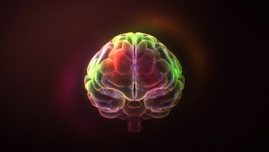 В Самаре в кинотеатре «Вертикаль» состоится премьера фильма «Мозг. Вторая Вселенная»
