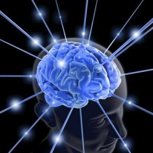 Учёные выяснили, что при длительных отношениях изменениям подвергается биохимия мозга