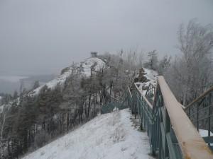 Жигулевский заповедник будет продолжать обустройство маршрута на Стрельную гору