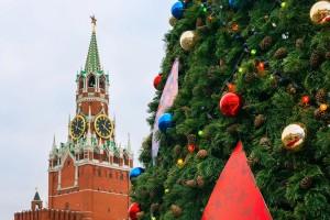 Главную новогоднюю елку страны срубят сегодня в Подмосковье