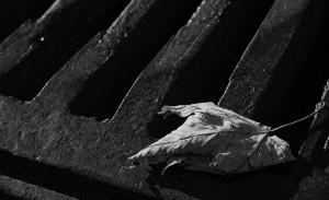 Из-за прорыва в канализационной трубе сточные воды затопили село Русская Борковка: ремонтники откачивали стоки из подвалов домов
