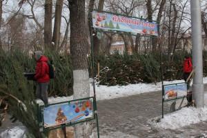В Самаре начали работу «Елочные базары»