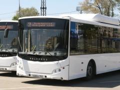 В Тольятти в новогоднюю ночь ряд автобусов будет работать до 4 часов