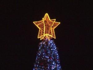 На площади Куйбышева в Самаре сегодня зажгут главную елку города