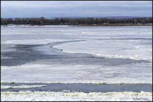 В Самаре из-за ледостава теплоходы и паром будут зимовать у элеватора