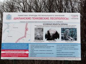 50 лет назад в Самарской области были созданы первые, особо охраняемые, памятники природы