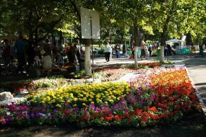 Струковский сад и набережную в Самаре откроют в апреле