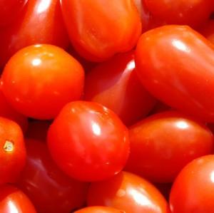 Специалисты Россельхознадзора проверят турецких производителей томатов