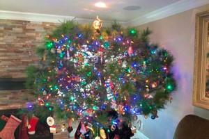 Семья 34 года наряжала купленную в 1983 году рождественскую елку