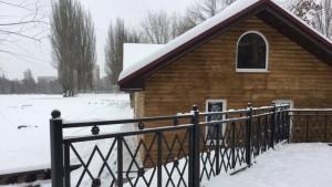 Новый домик для лебедей торжественно откроют завтра в парке Металлургов