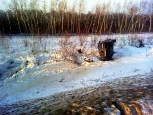 В Большеглушицком районе BMWX6 перевернулась в кювет